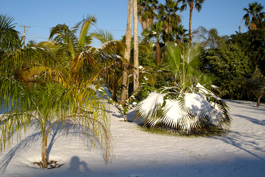 Rate The Climate Brownsville Texas Snowfall Hot Warm Average - Weather brownsville tx